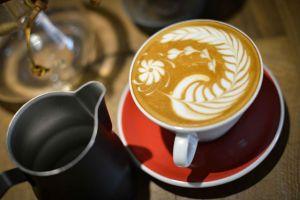 kahve-sozlugu-editor