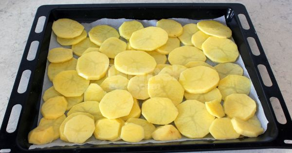 patates-oturtma-guncelleme-asama-1