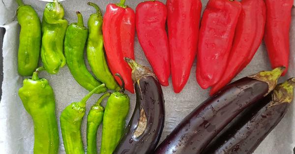 kozlenmis-sebze-salatasi1