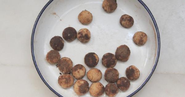 kati-yagsiz-tarcinli-misket-kurabiye3