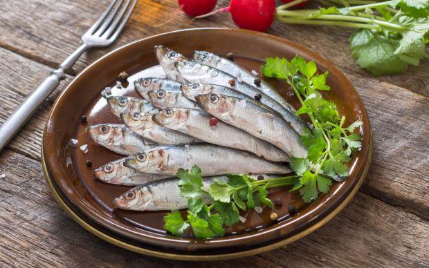Gümüş Balığı