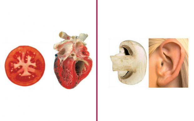 iyi-geldigi-organa-benzeyen-yiyecekler