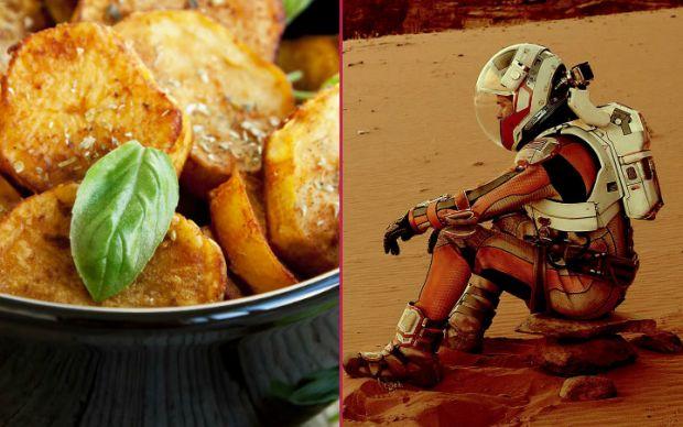 the-martian-feslegenli-patates-tarifi
