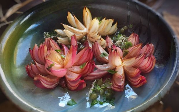 Fırında Çiçek Soğan Tarifi