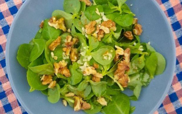 cevizli-semizotu-salatasi-tarifi