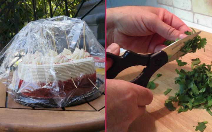maydanoz-bicak-pasta-1