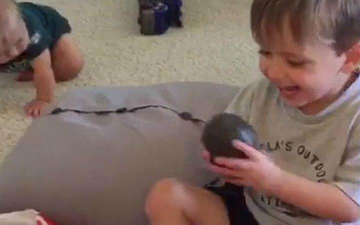 avokado-dogum-gunu-hediyesi