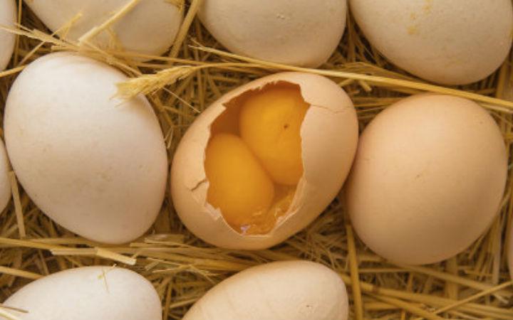 çift sarılı yumurta
