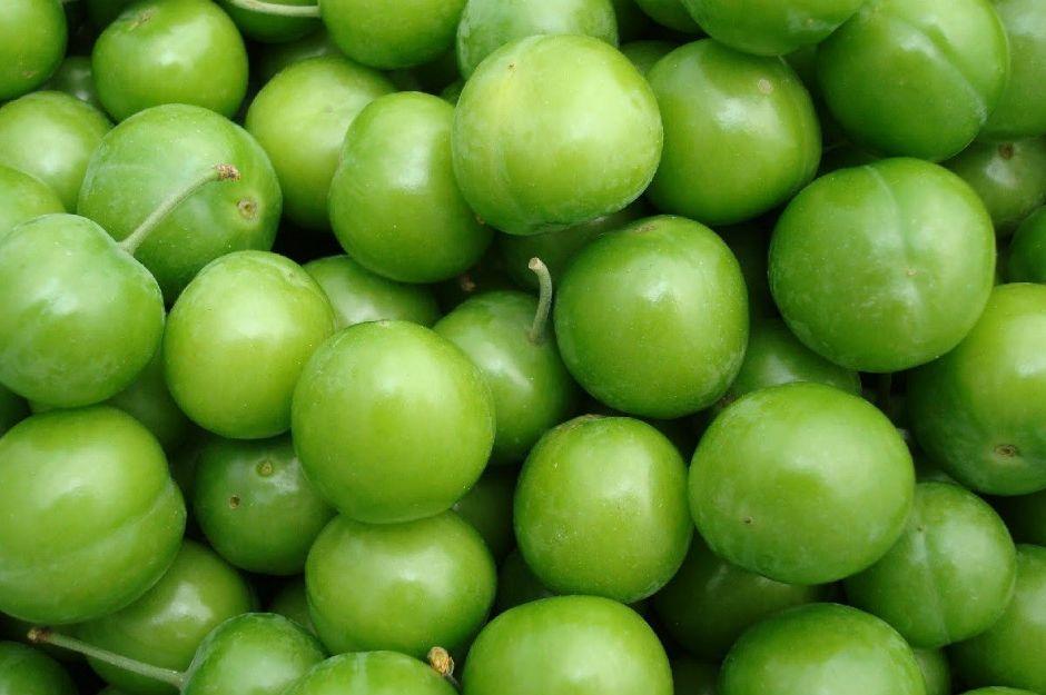 erik-yaz-yiyecekleri-manset
