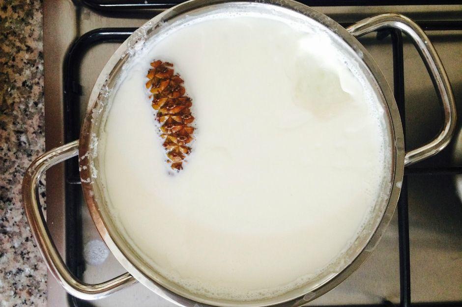 http://www.hassasanne.com/2014/08/cam-kozalagi-ile-yogurt-mayalama/ | hassasanne