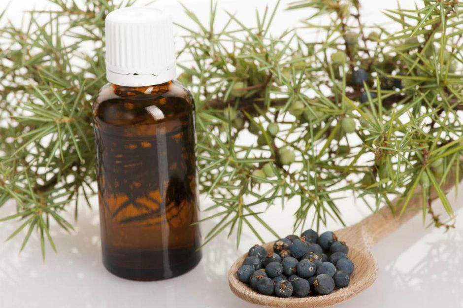 https://holisticzine.com/using-essential-oils-to-detoxify-your-body | holisticzine