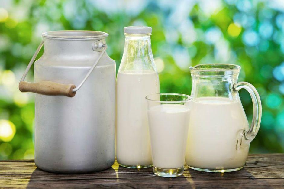 http://4sfoods.co.in/comparison-4s-milk-milk-brands-delhi-gurgaon/ | 4sfoods
