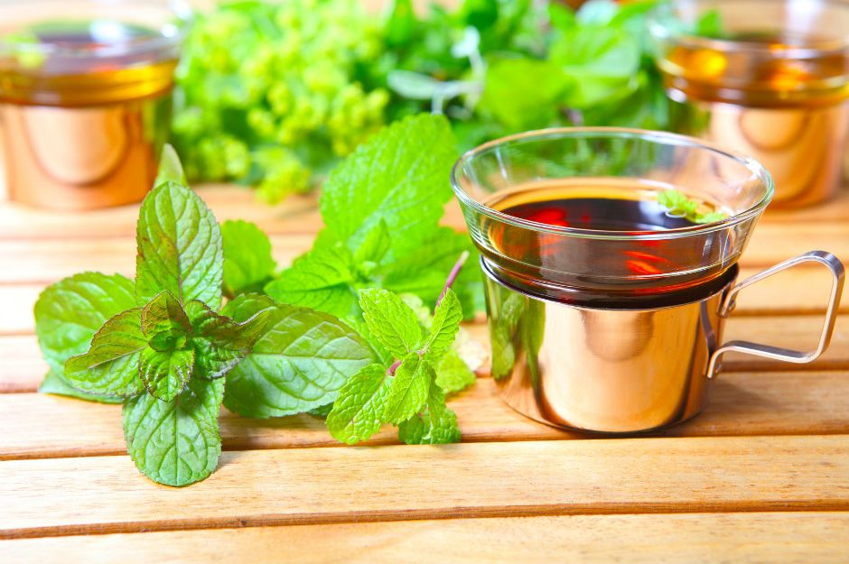 https://drhealthbenefits.com/food-bevarages/beverages/tea/health-benefits-lemon-balm-tea | drhealthbenefits