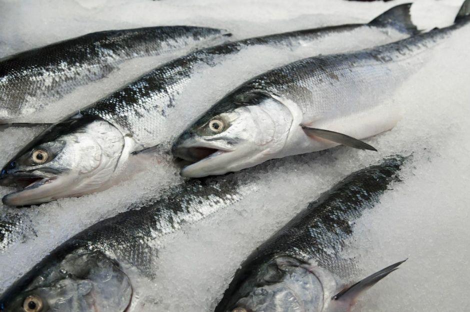 https://www.thespruceeats.com/frozen-fish-better-than-fresh-fish-1300625 | thespruceeats