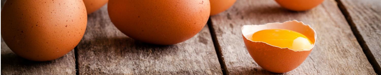 yumurta-kategorisi