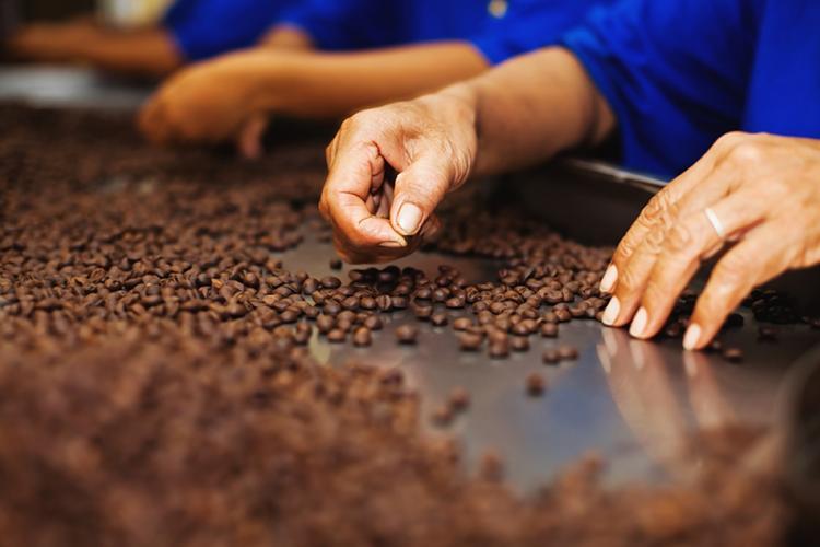 22 Ülkede İnsanlar Starbucks'ta Bir Bardak Latte İçmek İçin Ne Kadar Ödüyor starbucks brezilya