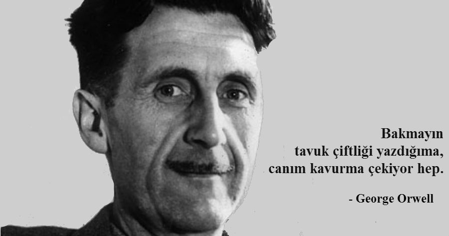 orwell-kavurma