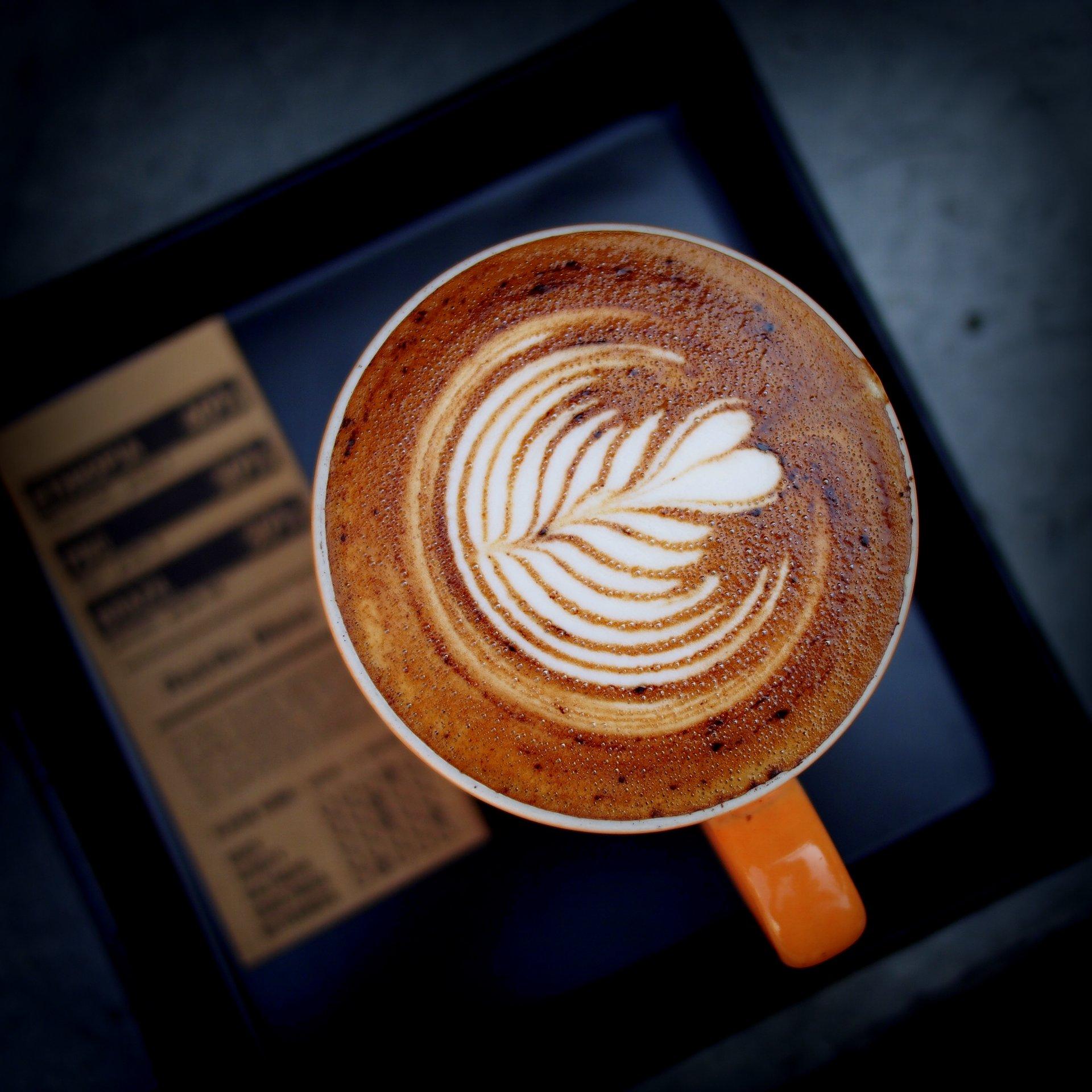 wikipedia - en güzel latte artlar