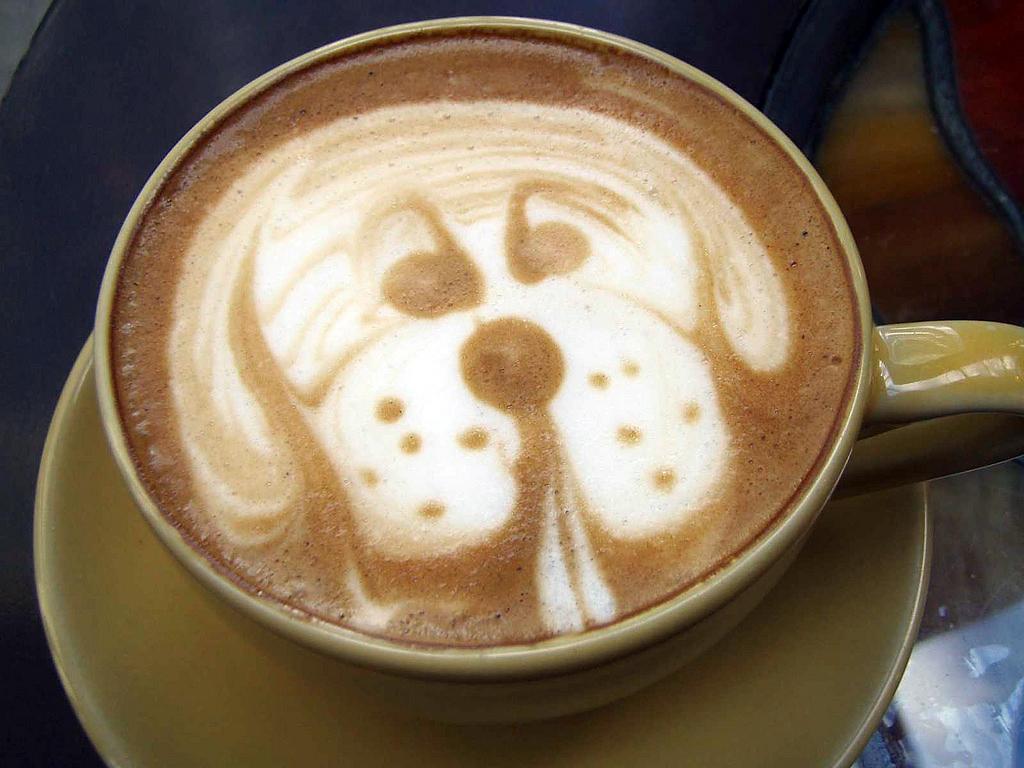 thinknice - en güzel latte artlar