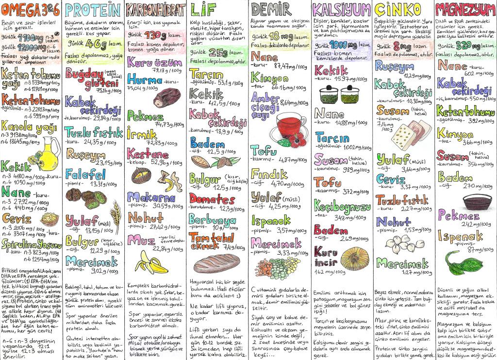 yeryuzuneozgurluk - vegan beslenme tablosu