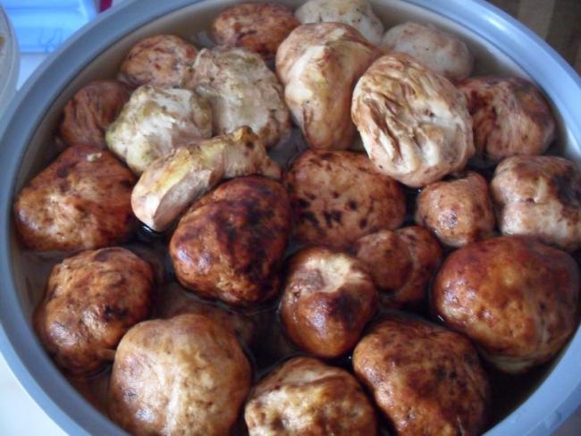 agaclar - domalan - yüz kızartan yiyecekler
