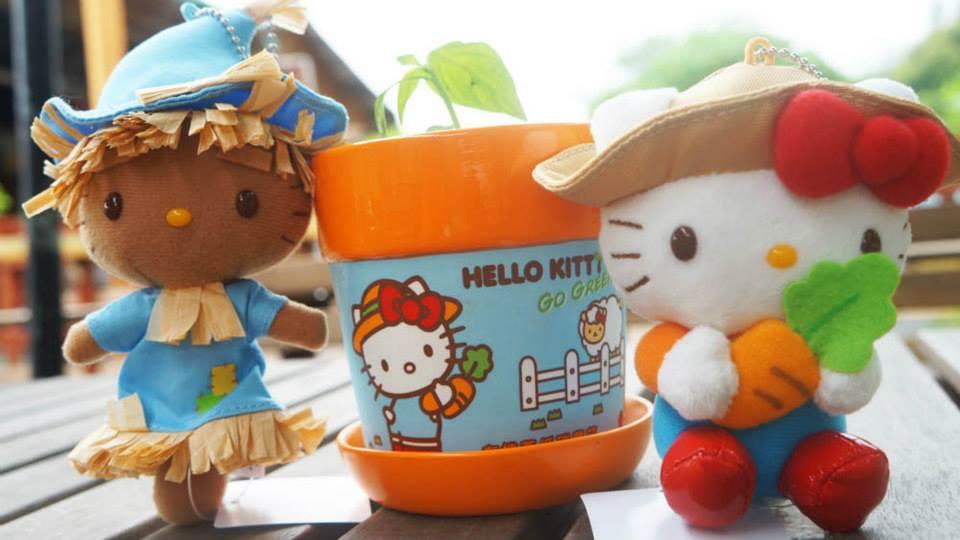 facebook - hello kitty organik çiftlik