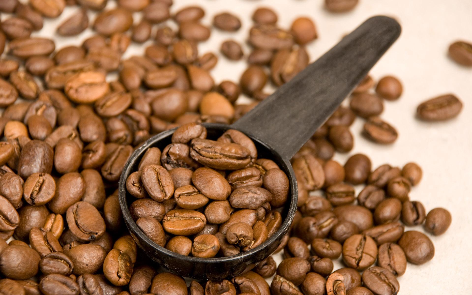 hbw - kahvenin keşfi
