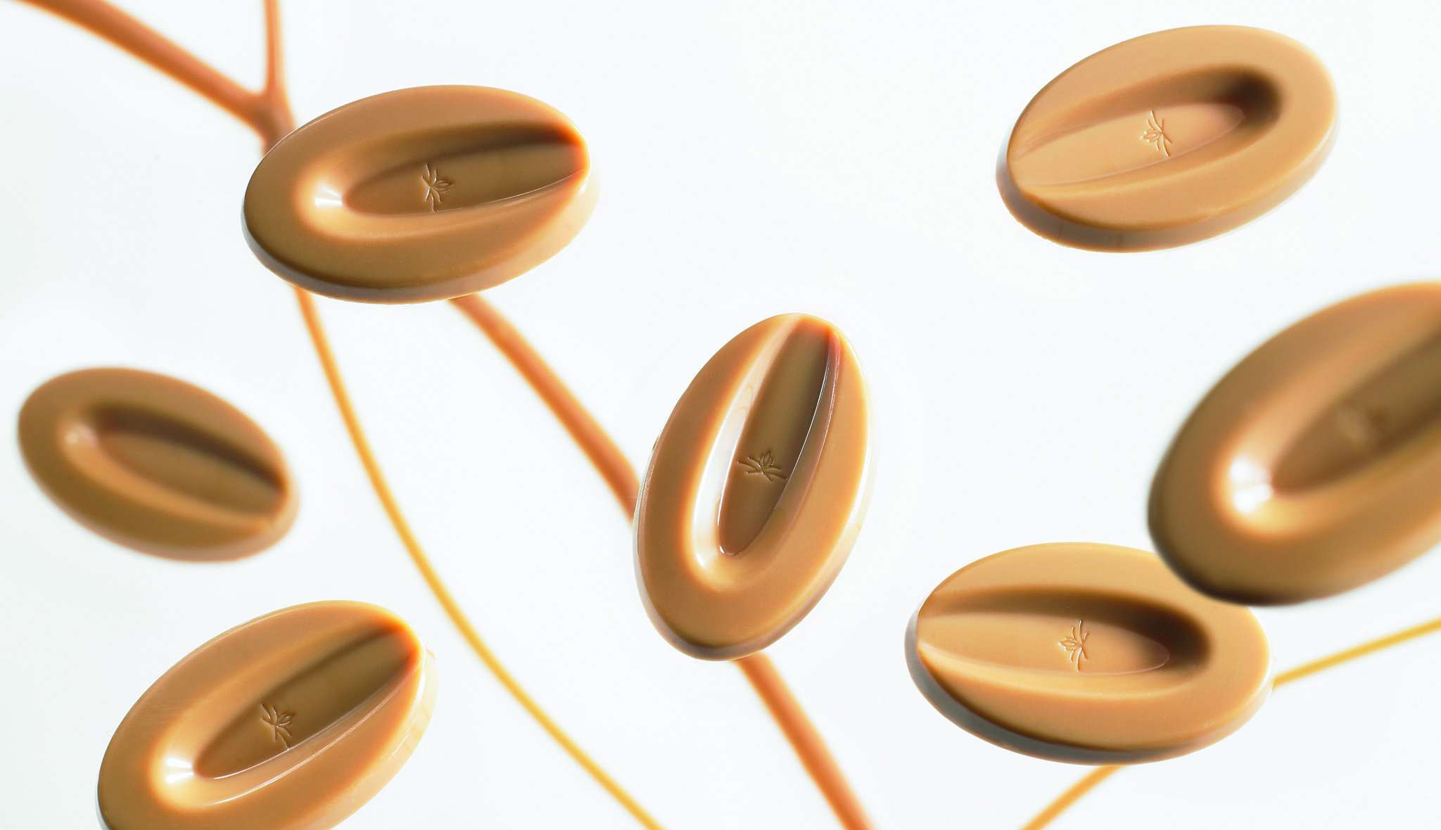 sari-cikolata