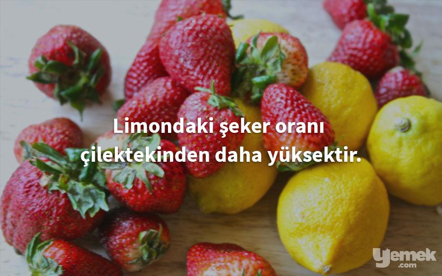 abellyblog - limon - yiyecekler hakkında bilgiler