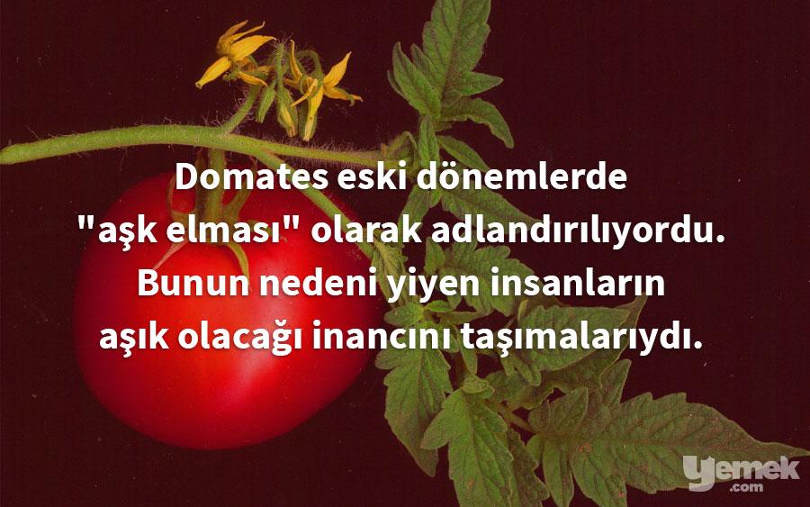 wikipedia - domates - yiyecekler hakkında bilgiler