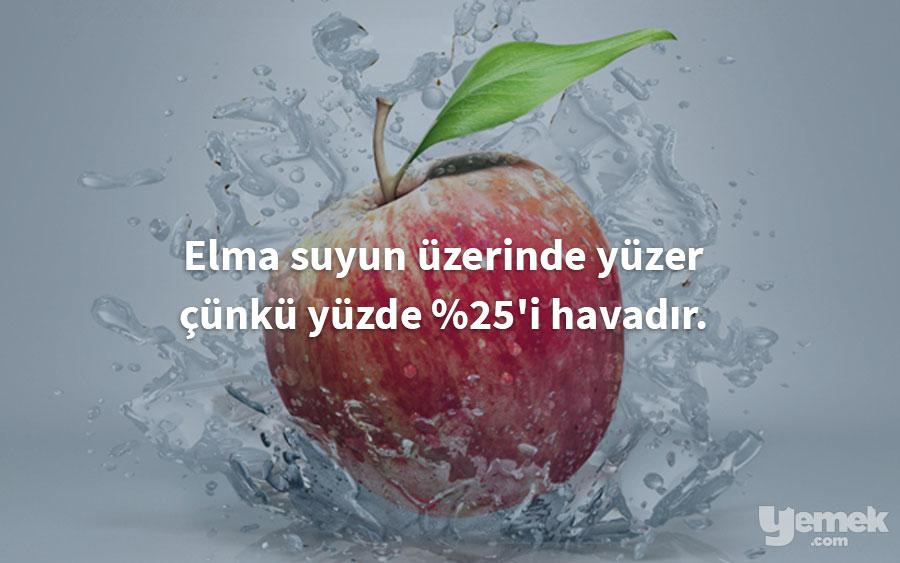 behance - elma - yiyecekler hakkında bilgiler