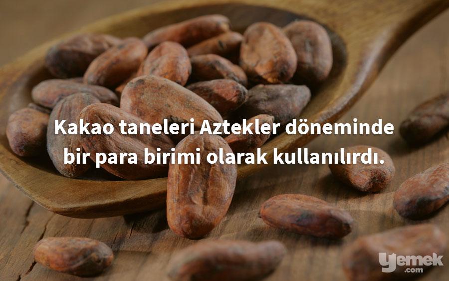 healingthebody - kakao - yiyecekler hakkında bilgiler
