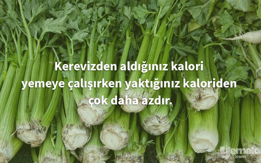 gardeningknowhow - kereviz - yiyecekler hakkında bilgiler
