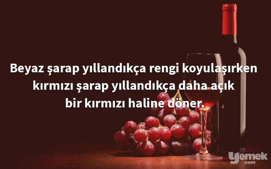 totalgymdirect - şarap - yiyecekler hakkında bilgiler