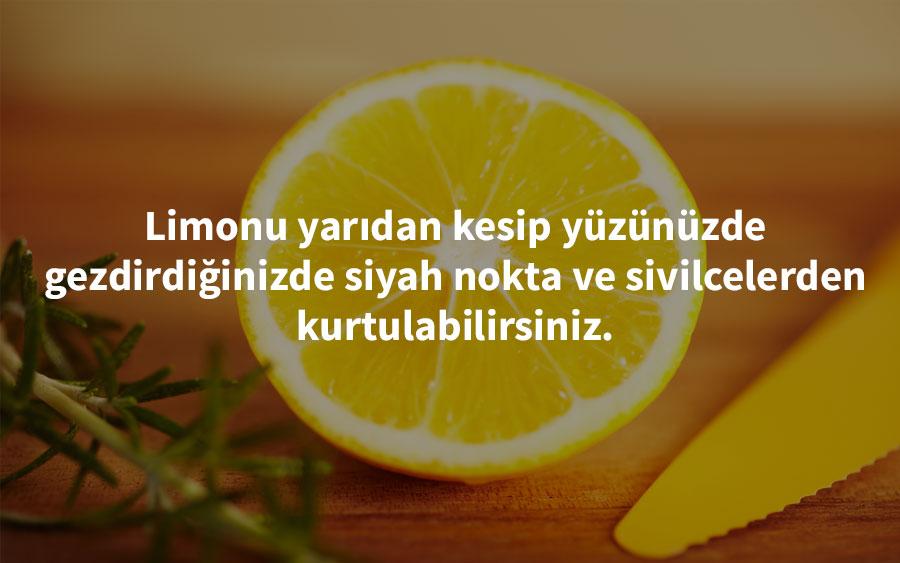 fairwaymarket - limon pratik bilgi