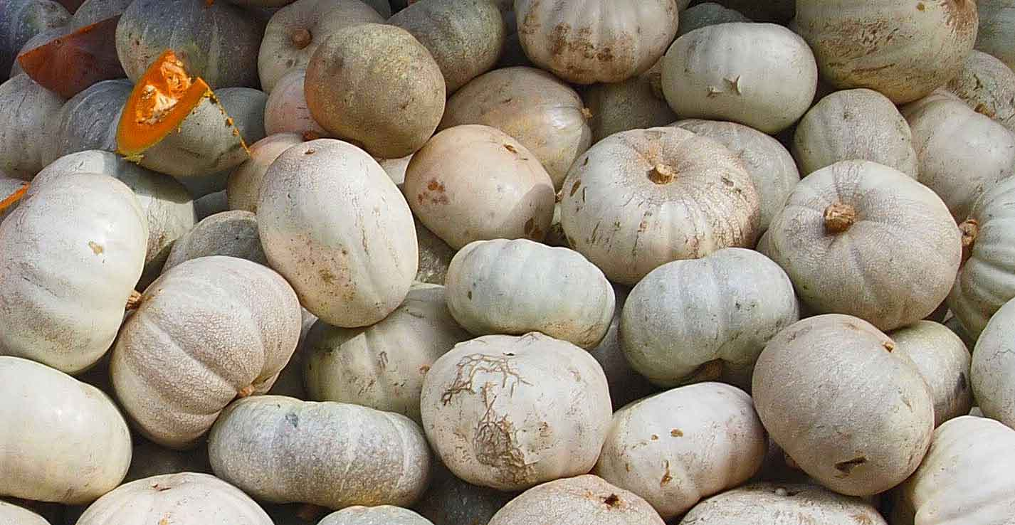 theothereurope - meyve olan sebzeler