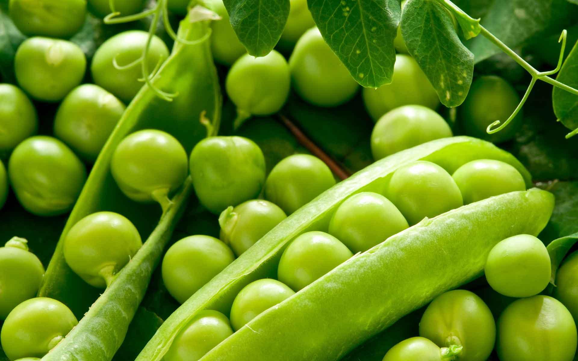 muluworld - meyve olan sebzeler