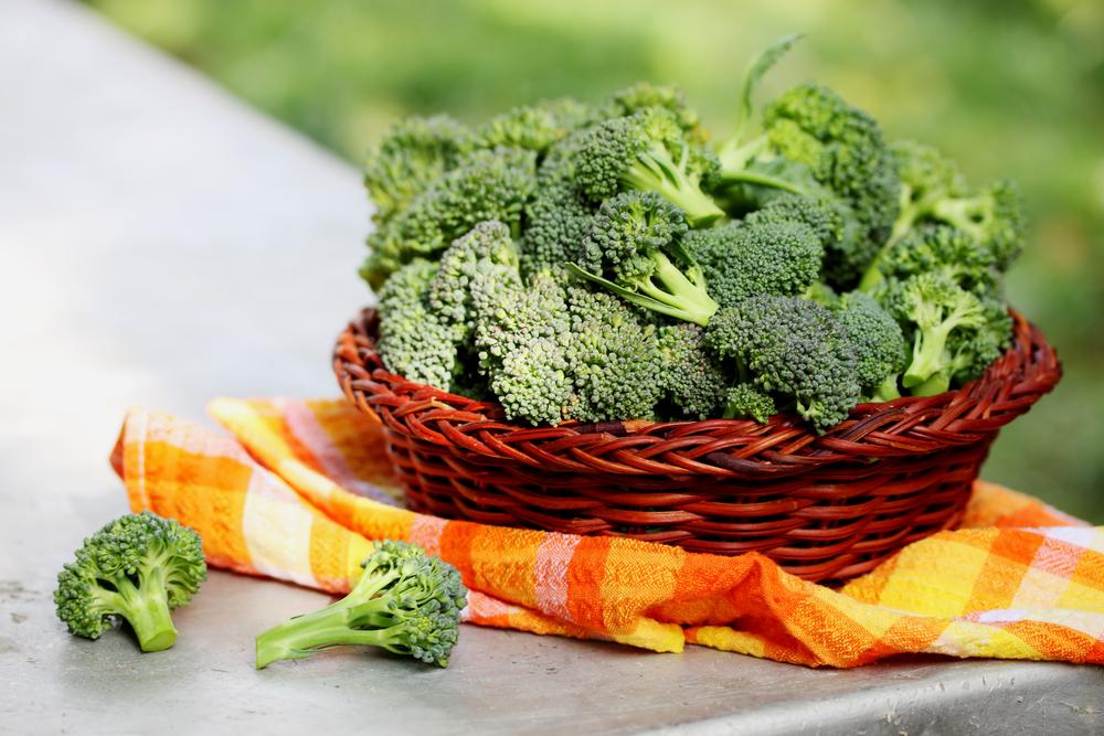 brokoli-kanser-korumasi