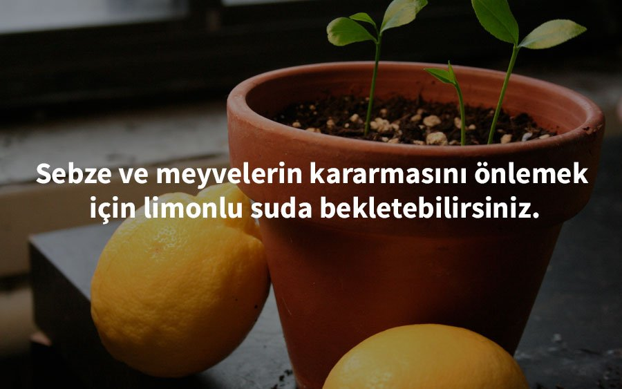 growingwildceeds-  limon pratik bilgi
