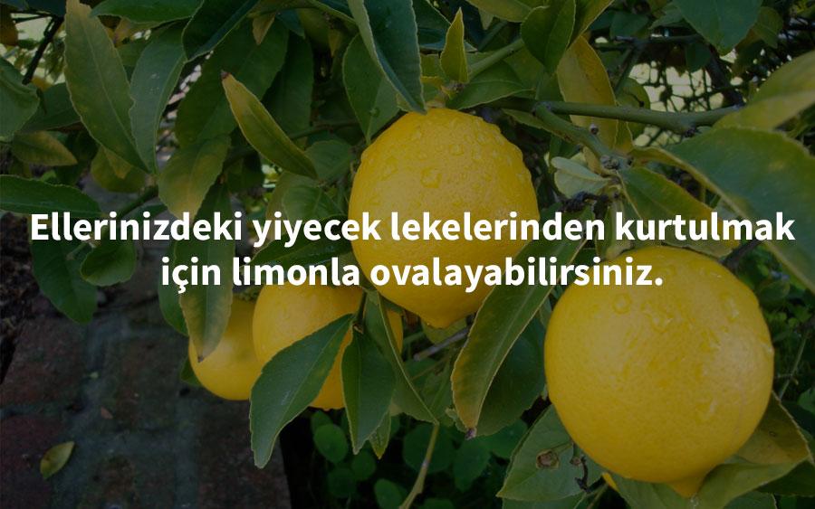 carolcassara - limon hakkında pratik bilgiler