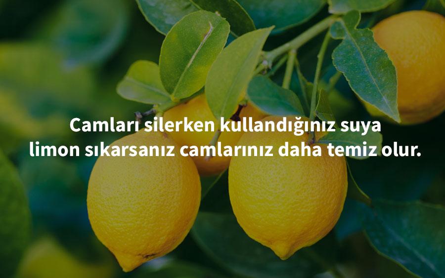 womenunplugged - limon pratik bilgileri