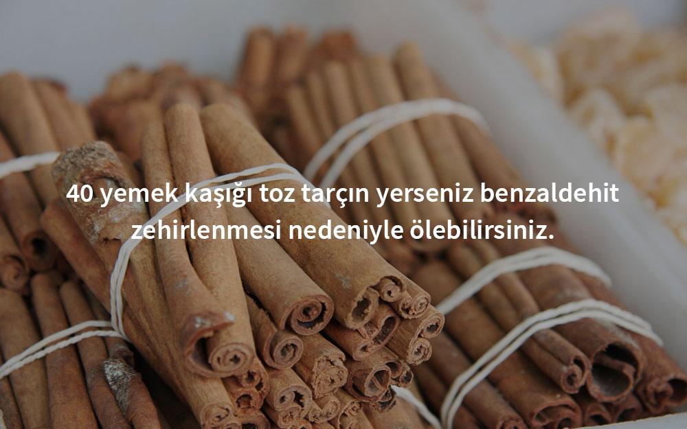zehirli-tarcin