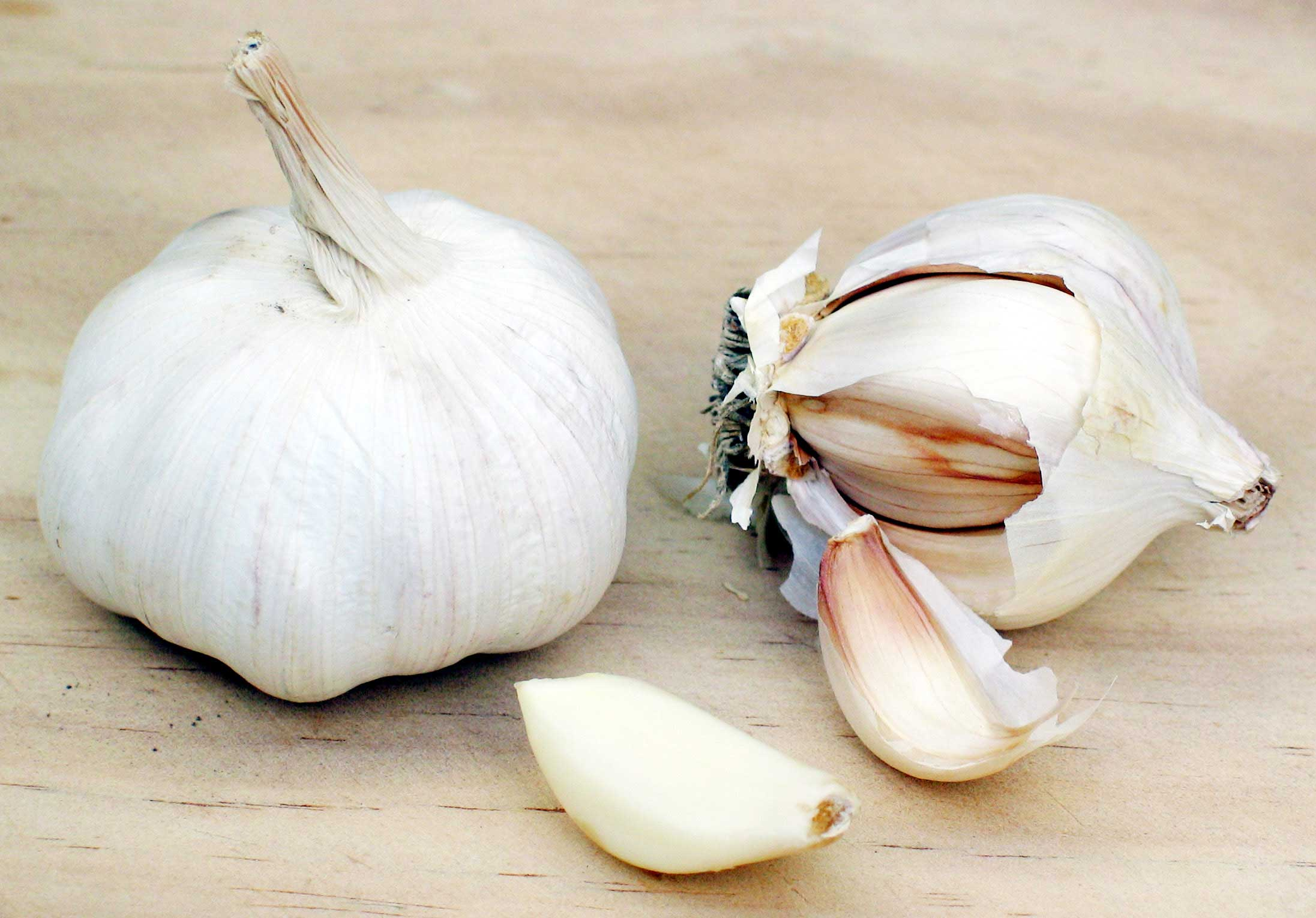 http://commons.wikimedia.org/wiki/file-garlic.jpg | wiki