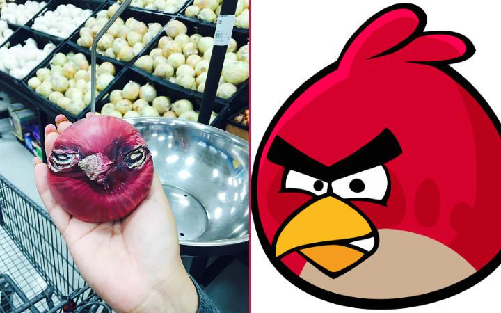 angry-bird-sogan