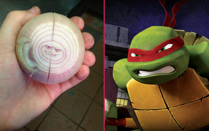 sogan-ninja-kaplumbaga-benzeyenler
