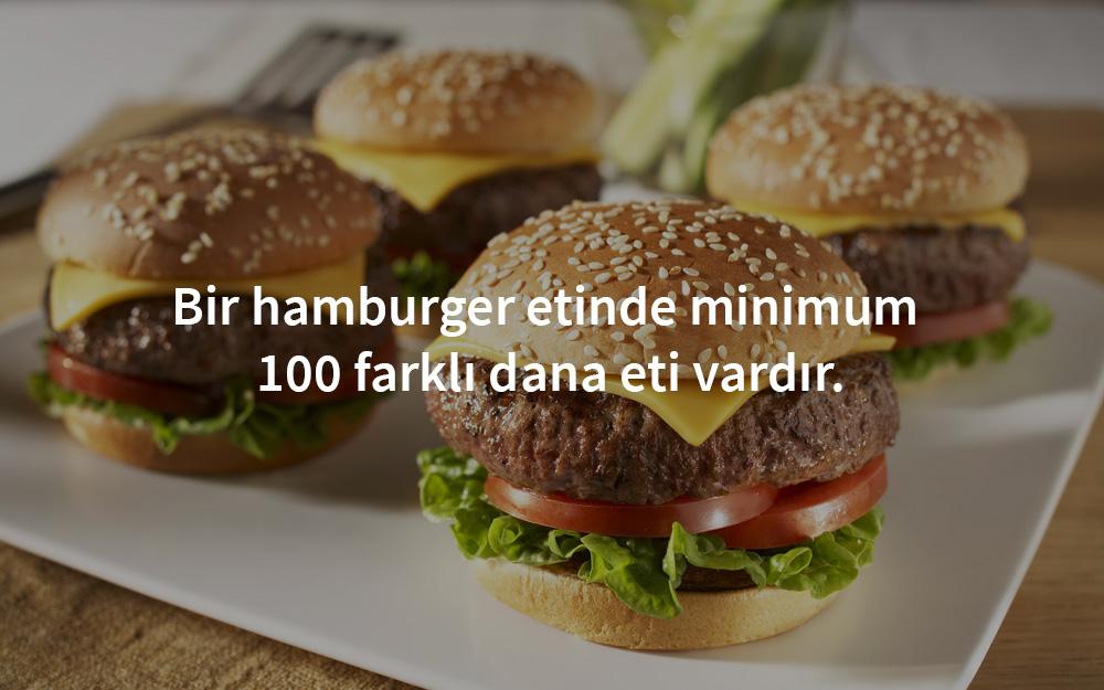 hamburger-eti