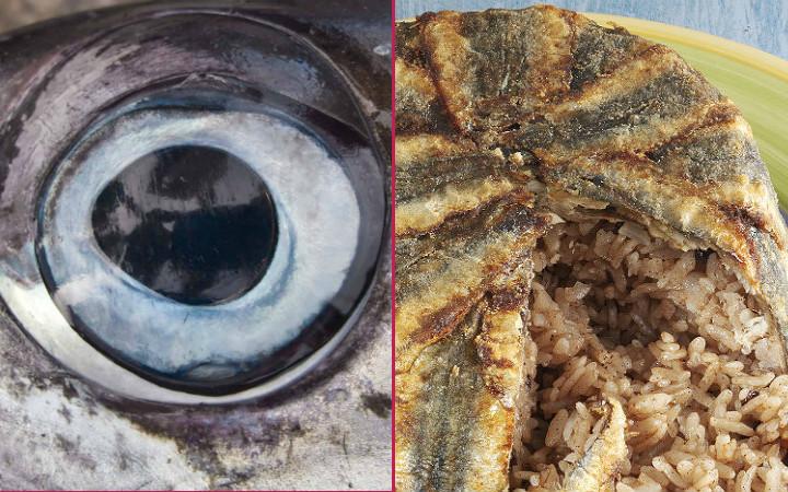 tuna-gozu-hamsi-pilavi