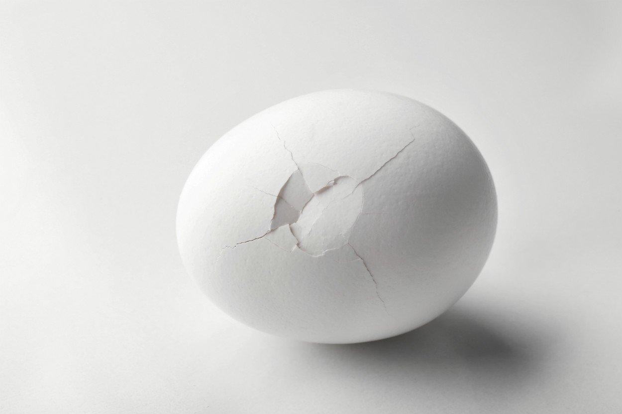 catlak-yumurta-kirik-yumurta-aralik-2020