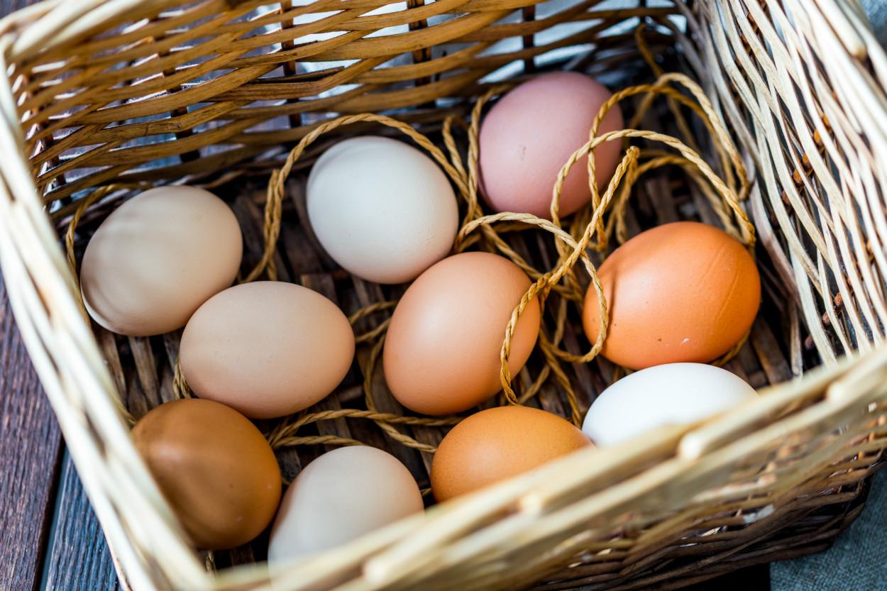yumurta-kahverengi-beyaz-kasim-2020