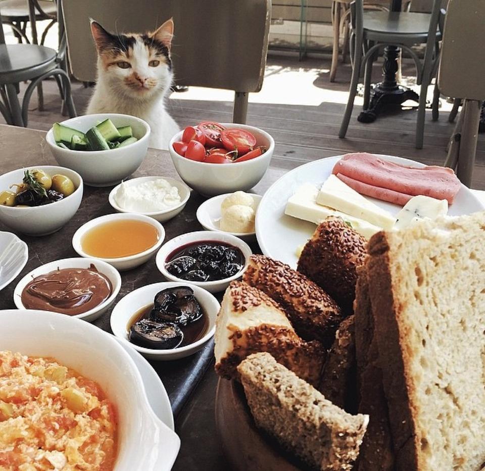 foursquare.com/den-cafe